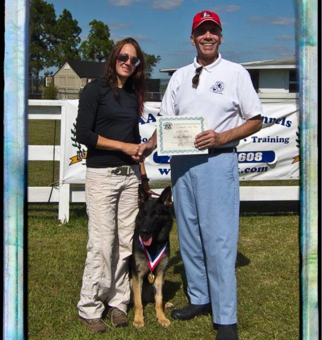 The Doghouse LLC BH Trials